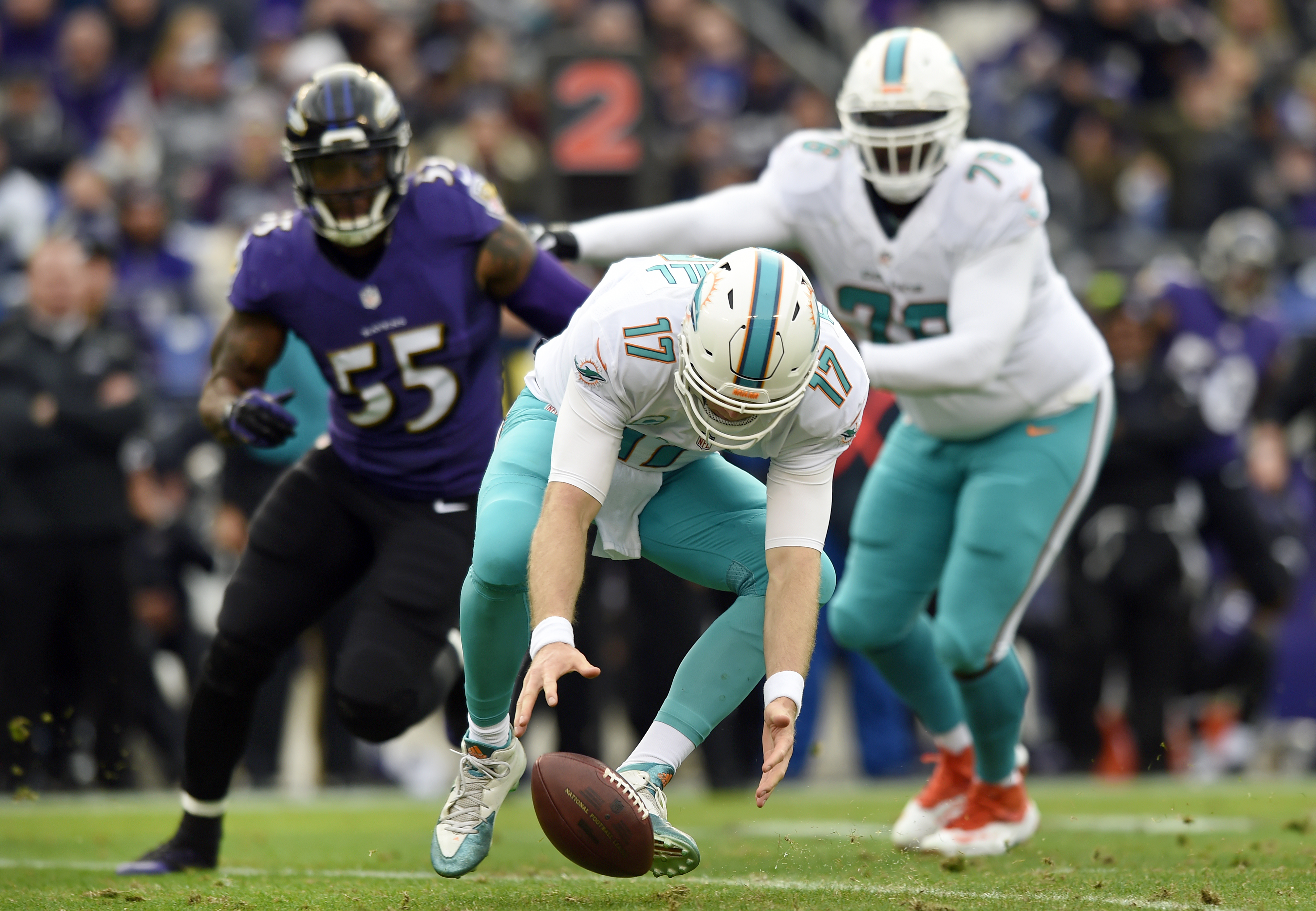 Miami Dolphins quarterback Ryan Tannehill (17) recovers a snapped ball that he fumbled in the first half of an NFL football game against the Baltimore Ravens, Sunday, Dec. 4, 2016, in Baltimore. (AP Photo/Gail Burton)